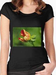 Enchanted Beginnings Women's Fitted Scoop T-Shirt