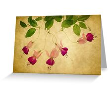 Fuchsia 1 Greeting Card