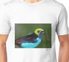 Paradise Tanager Unisex T-Shirt