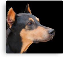 Profile of a doberman Canvas Print