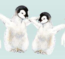 Baby Penguin Chicks Sticker