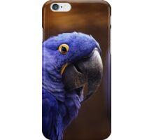 blue Parakeet iPhone Case/Skin