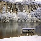 Auchinstarry Quarry Infrared by Cat Perkinton