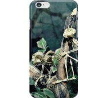 Monkey Skeletons iPhone Case/Skin