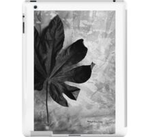 Stand Alone iPad Case/Skin
