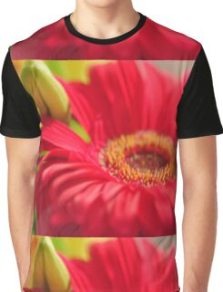 Red Gerbera, As Is Graphic T-Shirt