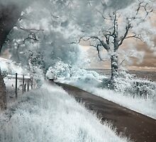 Infrared Road by Cat Perkinton
