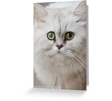 The Green-eyed Cat Greeting Card