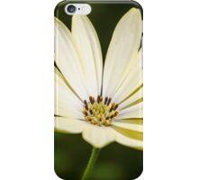 Buttermilk top iPhone Case/Skin