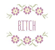 Bitch Cross Stitch Photographic Print