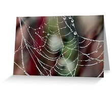 Dewy Spider Web Greeting Card