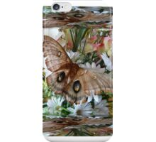 Mirror Box Butterfly iPhone Case/Skin
