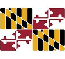 Maryland flag rounded  Photographic Print