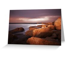 The last rays of sun this day.... Greeting Card