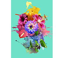 Flower Bomb Photographic Print