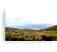 Desolate Field In Bodie Ghost Town Canvas Print