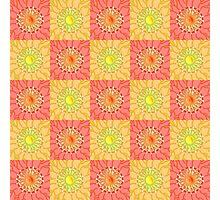 Chequered Sunshine Photographic Print