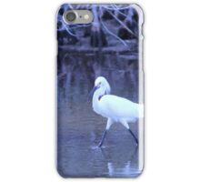 oiseau iPhone Case/Skin