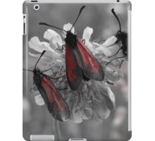 Red and gray photo of insects on a flower iPad Case/Skin