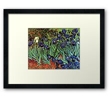 'Blue Irises' by Vincent Van Gogh (Reproduction) Framed Print