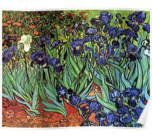 'Blue Irises' by Vincent Van Gogh (Reproduction) Poster