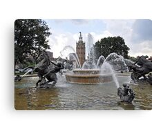Rush of Water Canvas Print