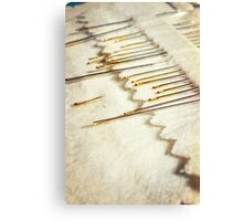Sewing Needles Canvas Print