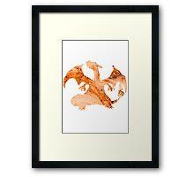 Charizard Silhouette Framed Print