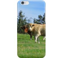 Hey! What you looking at? iPhone Case/Skin