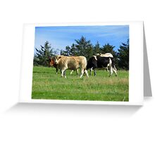 Hey! What you looking at? Greeting Card
