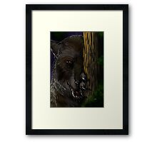 Lycanthrope - Waiting Framed Print