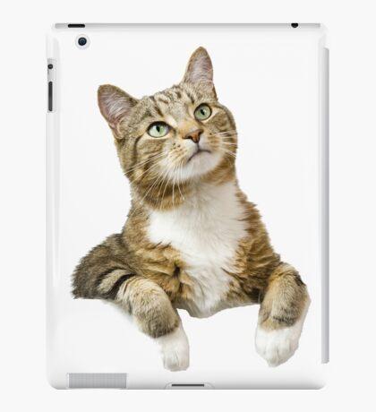 mysterious cat iPad Case/Skin