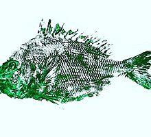 Gyotaku fish rubbing, Florida Sheephead, Surreal Green by alan barbour