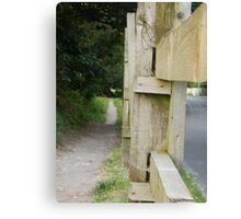 The Path By The Road Canvas Print