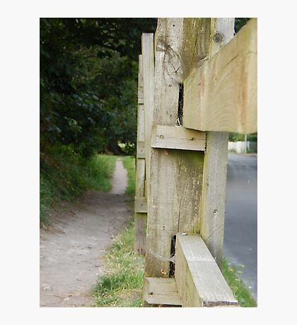The Path By The Road Photographic Print