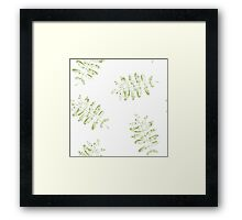 Leaves of mountain ash. Framed Print