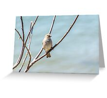 Tweet Tweet Greeting Card