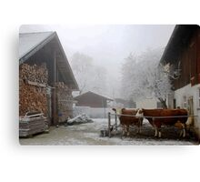 Get in girls, it's cold outside Canvas Print