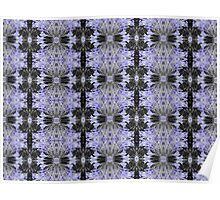Agapanthus Coloursplash Pattern Poster