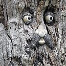 Tree Face by Ethna Gillespie