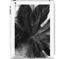 Close iPad Case/Skin