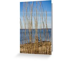 View On Long Beach Bar Lighthouse | Orient, New York Greeting Card