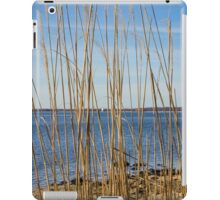 View On Long Beach Bar Lighthouse | Orient, New York iPad Case/Skin