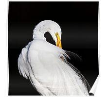 Always Egrets Poster