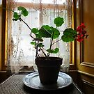 Still Life with Geraniums III by Ludwig Wagner