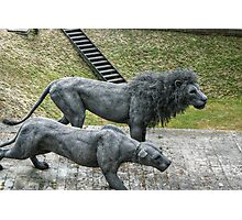 Lion Sculptures by the Tower Photographic Print