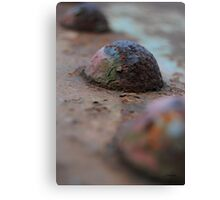 Iron Rivet Canvas Print