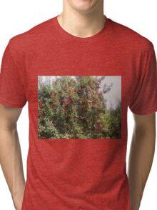 Bearing Apples Tri-blend T-Shirt