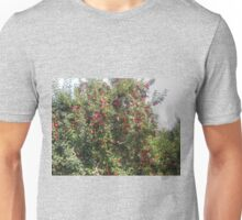 Bearing Apples Unisex T-Shirt
