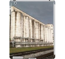 Katy Mills iPad Case/Skin